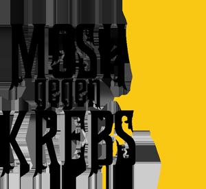Mosh gegen Krebs Spende